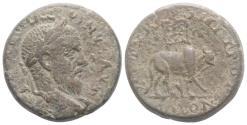Ancient Coins - PHOENICIA, Tyre. Macrinus. AD 217-218. Æ 22mm. R/ Bull RARE