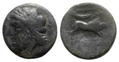 Ancient Coins - Northern Apulia, Arpi, 3rd century BC. Æ - Zeus / Boar