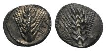 Ancient Coins - ITALY. Southern Lucania, Metapontion, c. 540-510 BC. AR Stater