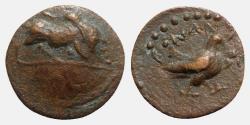 Ancient Coins - Pisidia, Konana, c. 1st century BC. Æ - Bull / Eagle - VERY RARE
