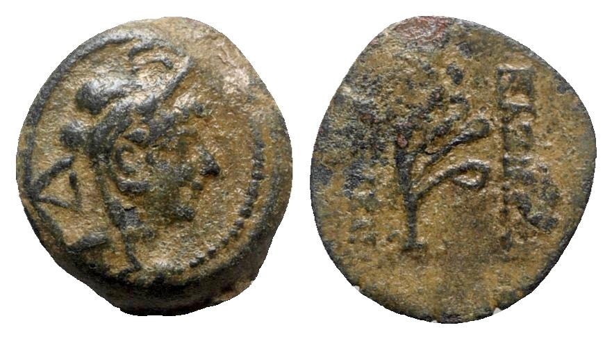 Ancient Coins - Seleukid Kings, Alexander II Zabinas (128-122 BC). Æ - R/ Aphlaston