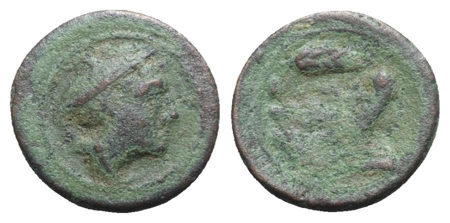 Ancient Coins - Roman Republic - Corn-ear series, Sicily, 211-210 BC. Æ Semuncia - RARE