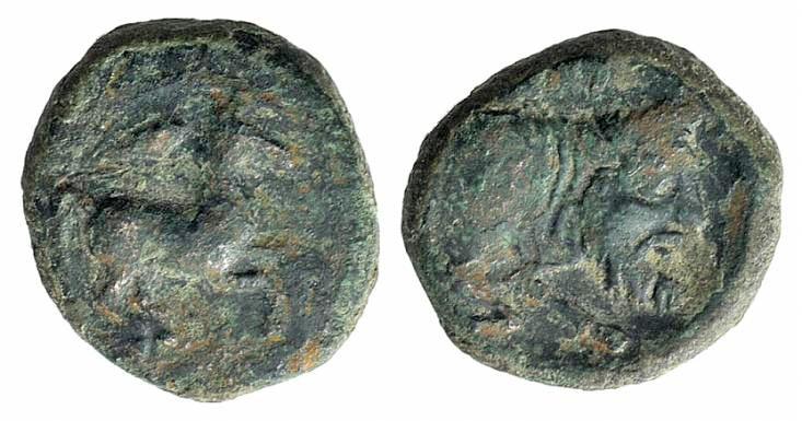 Ancient Coins - Sicily, Panormos as Ziz, c. 336-330 BC. AE 12mm RARE