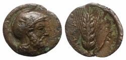 Ancient Coins - Southern Lucania, Metapontion, c. 425-350 BC. Æ