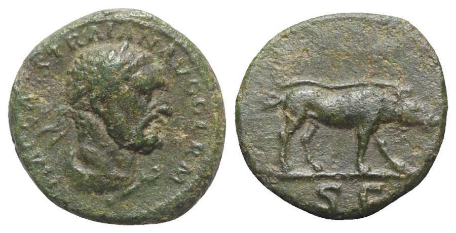 Ancient Coins - Trajan (98-117). Æ Quadrans. Rome, c. 98-102. Bust of Hercules R/ BOAR