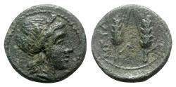 Ancient Coins - Southern Lucania, Metapontion, c. 225-200 BC. Æ