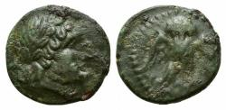 Ancient Coins - ITALY. Northern Lucania, Velia, 4th-2nd century BC. Æ 12mm R/ Owl