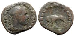 Ancient Coins - Philip I (244-249). Æ Sestertius - R/ She-wolf