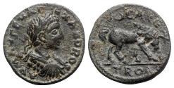 Ancient Coins - Severus Alexander (222-235). Troas, Alexandria. Æ - R/ Horse