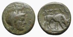 Ancient Coins - Kings of Macedon. Antigonos II Gonatas (277/6-239 BC). Æ