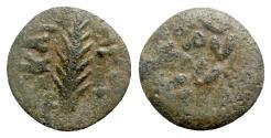 Ancient Coins - Judaea, Procurators. Porcius Festus (59-62 CE). Æ Prutah