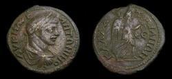 Ancient Coins - MOESIA INFERIOR, KALLATIS, Caracalla AD 197-217, Æ 26 mm (10.36 gm., 12h) VF Scarce Nike