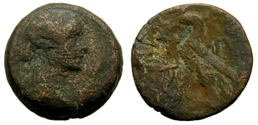 Ancient Coins - PTOLEMAIC KINGS of EGYPT, Cleopatra VII Thea Neotera, 51-30 BC. Æ Diobol - 80 Drachmae (26 mm, 18.42 gm., 12h), Alexandreia mint Fine