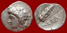 Ancient Coins - Lucania, Stater,Metaponto, c. 330-290 BC, AR. META. Scarce!!!