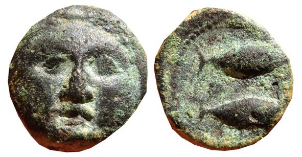 Ancient Coins - Spain, Gades (Cádiz) scarce 1/2 bronze calco. Frontal Herakles head / Two tuna. 200 - 100 B-C.