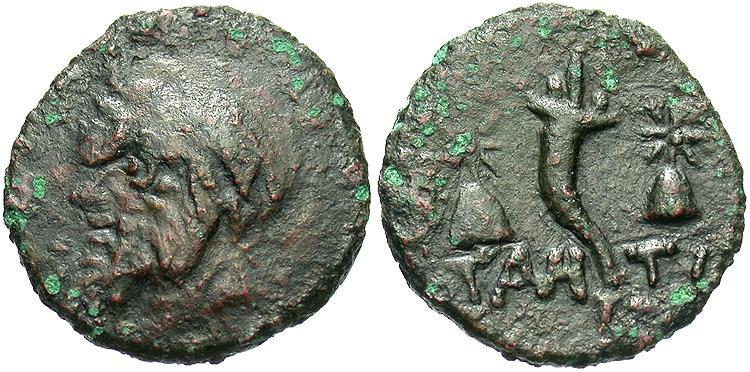 Ancient Coins - Thrace, Pantikapaion. Ca. 130-125 B.C. ' 18 mm. Fine/VF, dark brown patina.