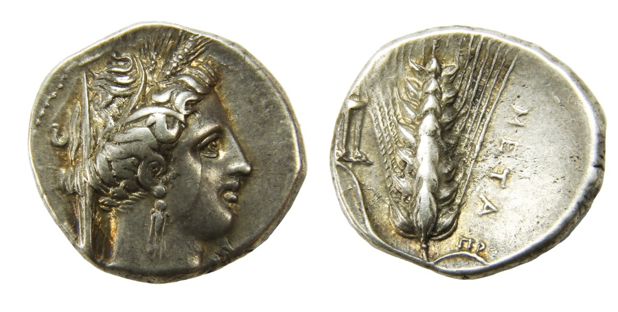 Ancient Coins - Metapontum Ar. stater (340-330 BC)