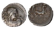 Ancient Coins - Q. Crepereius M. f. Rocus Ar serrate denarius.